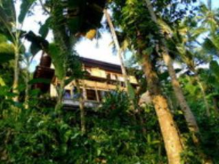 "Tree-Top Nest ""Jungalow"", Jungle and River - Sayan vacation rentals"