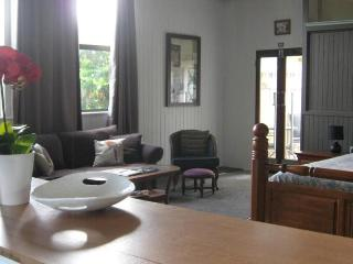 Romantic Guest house with Television and Fireplace - Millaa Millaa vacation rentals