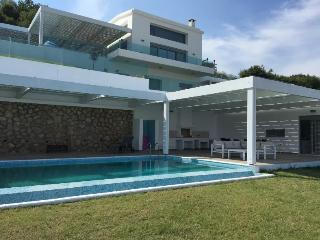 4 bedroom Villa with Internet Access in Vlycha - Vlycha vacation rentals