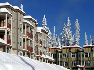 Nice Silver Star Mountain Apartment rental with Deck - Silver Star Mountain vacation rentals