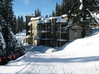 Wildwood 301 - Silver Star Mountain vacation rentals