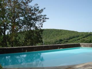 Villa with panoramic pool and garden - Siena vacation rentals