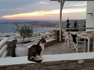 Parikia Paros seaview private Villa - Paros vacation rentals