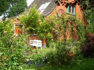 Charming cottage with romantic garden near river - Husum vacation rentals