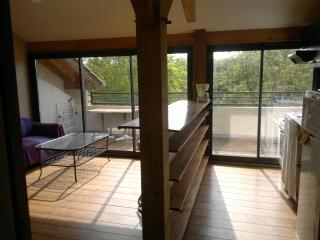 Superbe appartement T3 52m2 à 20' Hossegor - Josse vacation rentals