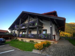 1 bedroom Apartment with Internet Access in Hirschegg - Hirschegg vacation rentals
