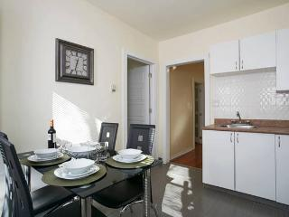 Bright newly renovated in Plateau - Montreal vacation rentals