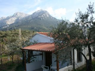 Cozy 1 bedroom House in Oliena with Television - Oliena vacation rentals