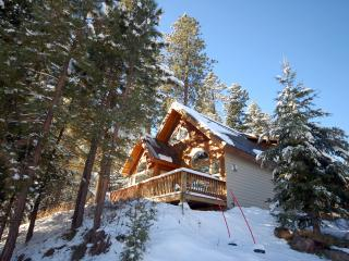 Ridgetop Pines Retreat - Convenient, Secluded - McCall vacation rentals