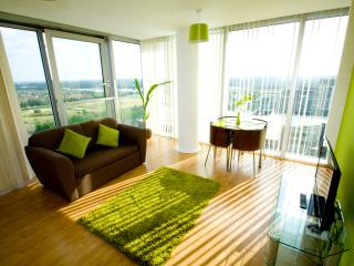 Stylish, chic, modern apartments. - Milton Keynes vacation rentals