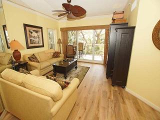 BA 201 - Hilton Head vacation rentals