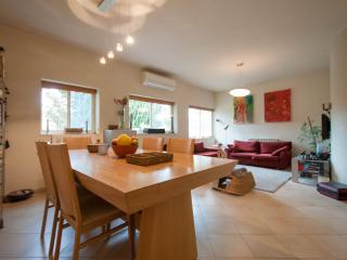 Private  room with  breakfast included - Jerusalem vacation rentals