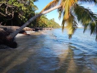 Villa Lion - Punta Cana vacation rentals