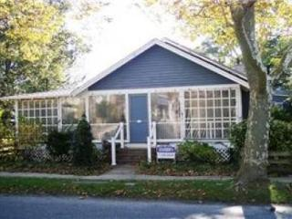 Ocean Block Pines Cottage  - 4 Bedrooms - Rehoboth Beach vacation rentals
