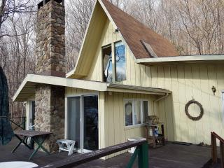 Keuka Lake Home available on special offer - Keuka Park vacation rentals