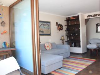 Parque Araucano Familiar Apt 3 bedromm 6 person - Santiago vacation rentals