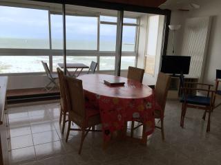 Appartement face à la baie Les Sables d'Olonne - Les Sables-d'Olonne vacation rentals