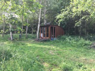 Attwood Coppice, Camping/Retreat/Hermitage hut/pod - Wolverley vacation rentals