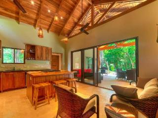 Nice House with Shared Outdoor Pool and Microwave - Nosara vacation rentals