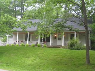 In-town Leland Walk to Lake MI. Near golf,wineries - Leland vacation rentals