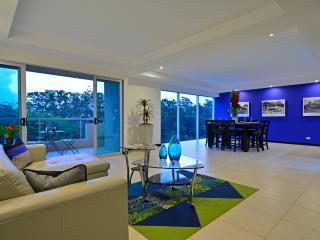 Contemporary 3BR Apart in La Sabana - San Jose vacation rentals