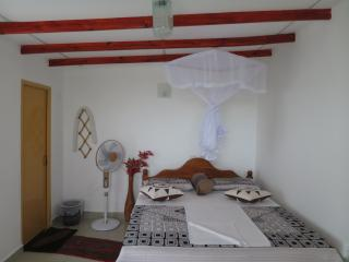Charming Guest house in Sigiriya with Boat Available, sleeps 8 - Sigiriya vacation rentals