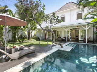 The Colonial Villa Bali, not just a homestay... Beautiful villa near the beach! - Sanur vacation rentals