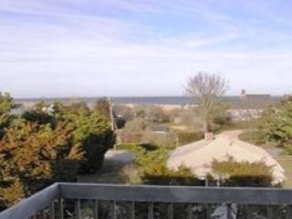 NAUSET HEIGHTS VACATION HOME - East Orleans vacation rentals
