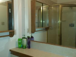 Fabulous  Condo close to U of Manitoba - Winnipeg vacation rentals