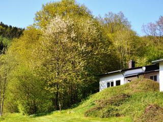 Eifel Landhaus Seeblick / Lake View Country House - Biersdorf am See vacation rentals