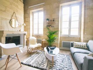 Superbe duplex centre historique coeur de Bordeaux - Bordeaux vacation rentals