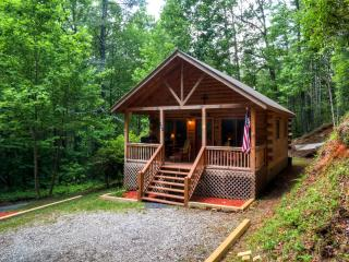 'Little Rock Creek Cabin' Quaint 1BR Genuine Log Cabin in Rich Mountain w/Wifi & Nice Porch - Near Blue Ridge, Ellijay, Outdoor Recreation & More! - Cherrylog vacation rentals