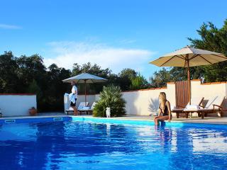 Domaine de Palatz: Gite Lavande - Laure-Minervois vacation rentals