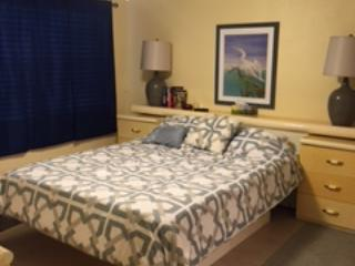 Amazing 2/1 Condo on the Golf Course - Mulberry vacation rentals