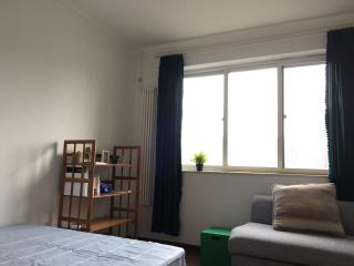 CBD-A bright cozy room #art #travel #free VPN - Beijing vacation rentals