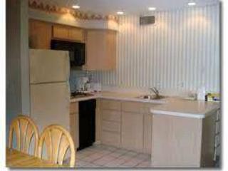 1br home in Treasure Island - Saint Petersburg vacation rentals