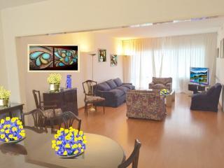 3/4 DORM TARIFA BAJA RECOLETA  8BALCON GARAGE - Buenos Aires vacation rentals