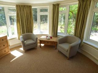 THE ROWANS, pet-friendly woodland cottage, garden, walking trails, Saint Ives - St Leonards vacation rentals