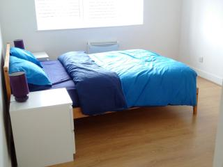 Modern 1 bedroom flat, 1 minute walk to Station - Croydon vacation rentals