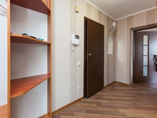Comfortable 1 bedroom Apartment in Kiev - Kiev vacation rentals