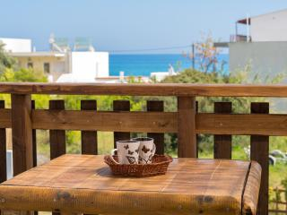 Renovated apartment - 40 meters from the sea - Stegna vacation rentals