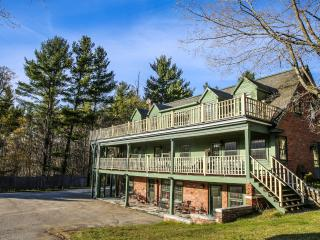 Great for Groups! Sleep 20: 6.5 bedroom, 6.5 baths 30 acres Pool, tennis, dogs - Manchester vacation rentals