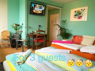 Top central and quiet apartment in green area - Hamburg vacation rentals
