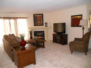 Pet Friendly Walk In, 2 Kings, Sleep 6, Amenites - Branson vacation rentals