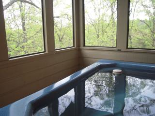 Nice 2 bedroom Pigeon Forge Cabin with Dishwasher - Pigeon Forge vacation rentals