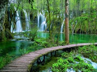 Charming 2 bedroom Apartment in Plitvice Lakes National Park - Plitvice Lakes National Park vacation rentals