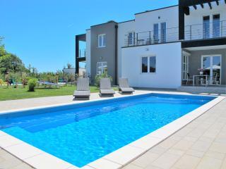 Nice Villa with Washing Machine and Trampoline - Liznjan vacation rentals