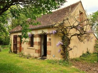 Beautiful 1 bedroom Manor house in Treigny - Treigny vacation rentals