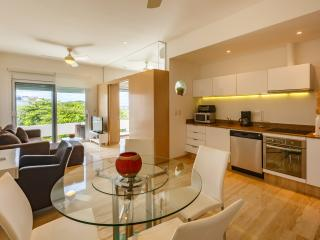 Bluewater Condo Playa del Carmen PH Ocean View - Playa del Carmen vacation rentals