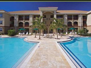Tampa Bay Luxury Condo Rental, Best Beaches Nearby - Odessa vacation rentals